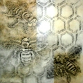 Frottage Drawing from the Threatened Pollinators installation
