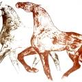 Equus No.8